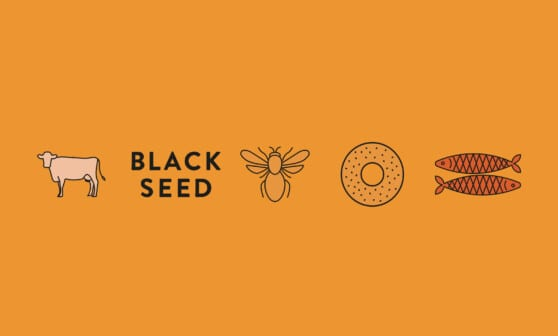 icons designed for black seed bagels