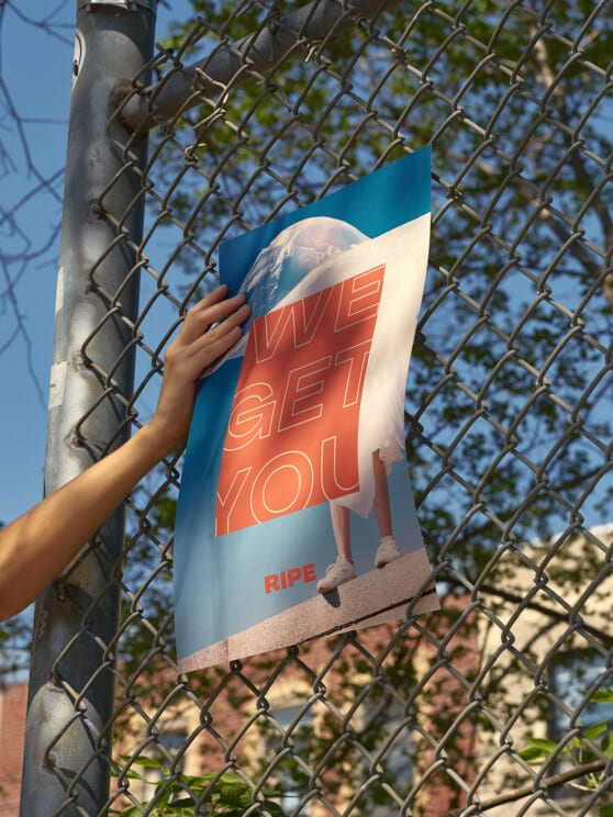 Ad poster for Ripe being put up on a fence