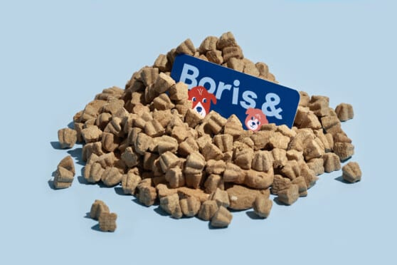 boris and horton business card in a pile of dog food